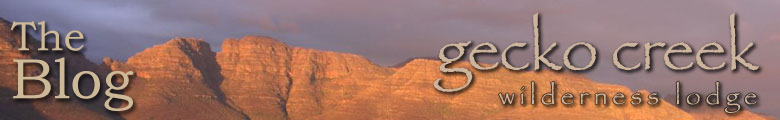 Gecko Creek - Cederberg Accommodation